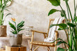 Leinwandbild Motiv Neutral composition of living room interior with rattan armchair, wooden bench, a lot of tropical plants in design pots, decoration and elegant personal accessories in stylish home decor.