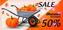Autumn Sale, Discount White Mi...