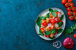 top view of delicious Italian vegetable salad panzanella served on plate on textured green surface with tomatoes, basil and red onion