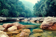Rainforest Landscape. Cherrapunji The Wettest Place On Earth Placed In Northeast India