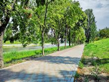 Road Of Tiles Along The River. Along It Grow Trees And Green Grass.