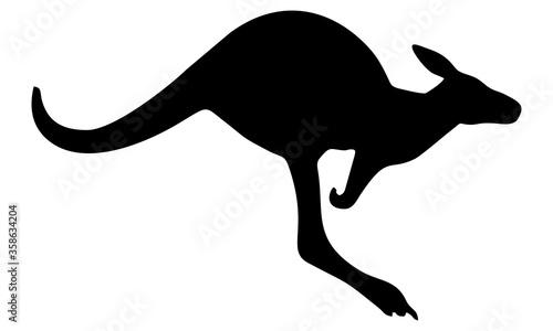 Carta da parati kangaroo vector silhouette