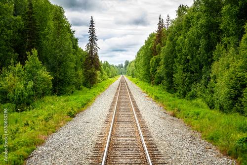 Canvastavla Straight forward, railtracks in the alaskan wilderness