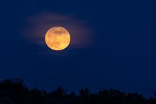 Full Moon Rising - A Full Moon...