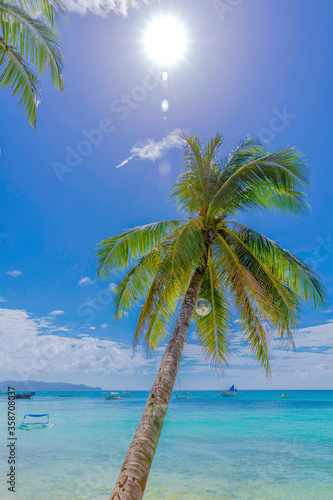 Fototapety, obrazy: tropical beach with palm trees, white beach path, Boracay island, Philippines.