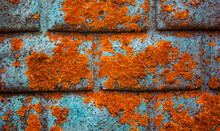 Brick Textured Background With...