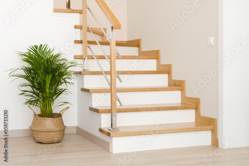 Wallpaper Mural Modern natural ash tree wooden stairs in new house interior