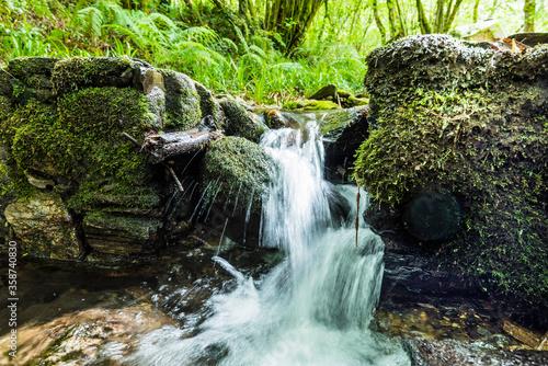 una cascada en un pequeño riachuelo con mucho verde