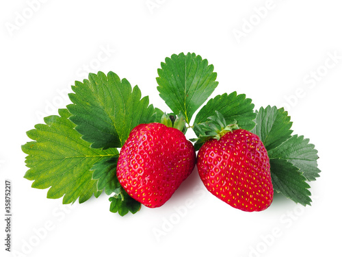 Fotografia Two ripe juicy red strawberries isolated on a white background with green leaves