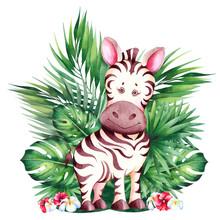 Little Cartoon Zebra.