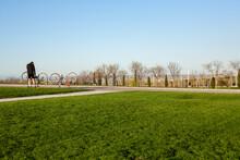 Día De Bicicleta En El Parque