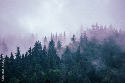 Misty mountain landscape Fototapete