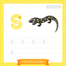 Letter S Lowercase Tracing Pra...