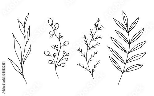 Foto Hand-drawn black outline vector floral set