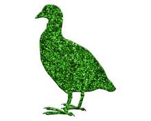 Coot Duck Bird Green Glitter Isolated On White Background Vintage Animal Illustration