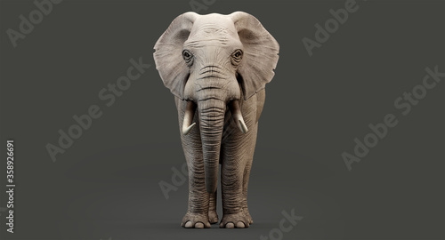 Photo giant elephant. 3D render of an elephant isolated, 3d rendering