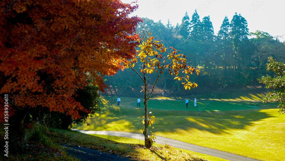 Fototapeta 春夏秋冬、四季折々の美しさが広がる広大なゴルフコース