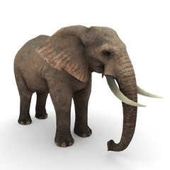 giant elephant. 3D render of an elephant isolated on white, 3d rendering