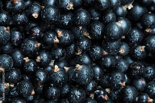 Foto background of black currant berries macro
