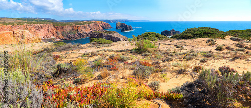 Fotografie, Tablou beautiful costa vicentina with colorful vegetation, Carrapateira west algarve