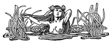 Naked Woman (mermaid) Bathes In The Thickets Of Lake Grass. Separator Of Chapters In A Book. Illustration Of The 19th Century. White Background.
