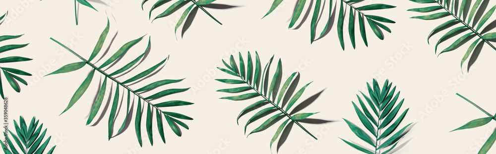 Fototapeta Tropical palm leaves from above - flat lay