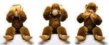 Three Wise Monkeys That Don't See, Don't Hear, Don't Speak. Concept Of Wisdom With Stuffed Toy Animals On White Background.