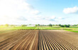 Farm field is half prepared Ridges and mounds for planting. Marking the field in rows. Agricultural technology and standardization. Organization and systematization. Beautiful landscape of plantation.