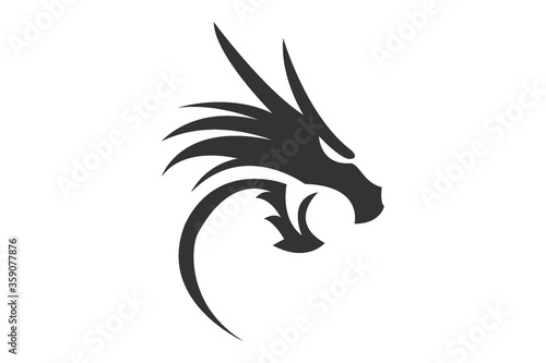 Fotografie, Obraz vector image of a dragon