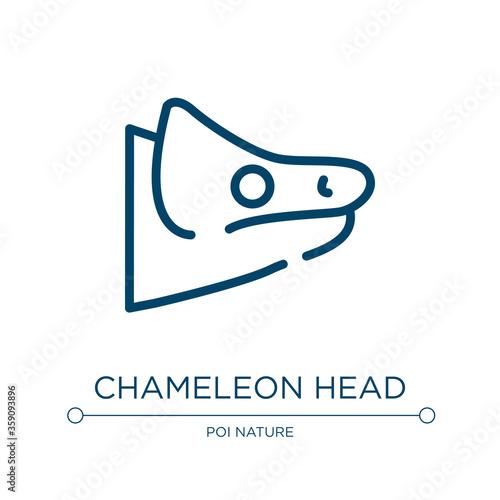 Fototapeta Chameleon head icon. Linear vector illustration from fauna collection. Outline chameleon head icon vector. Thin line symbol for use on web and mobile apps, logo, print media. obraz na płótnie