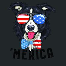 Border Collie Lover Patriotic ...