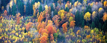 Photo From A Helicopter. Autum...
