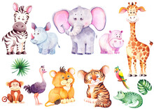 Big Set Of Cute African Animal...