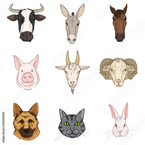 Vector Set of Cartoon Farm Animals Heads