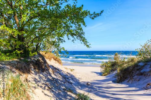 Fotografie, Obraz Entrance to beautiful white sand beach with blue sea near Kolobrzeg, Baltic Sea