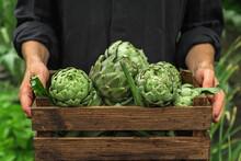 Organic Vegetables. Healthy Ve...