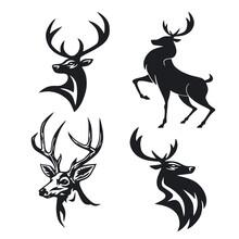 Deer Logo Vector Template Desi...