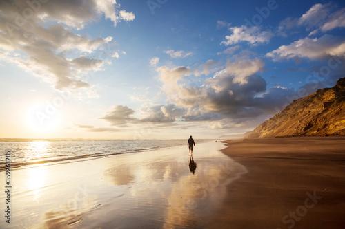 New Zealand coast - 359263285