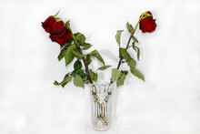 Three Red Wilted Roses In A Cr...