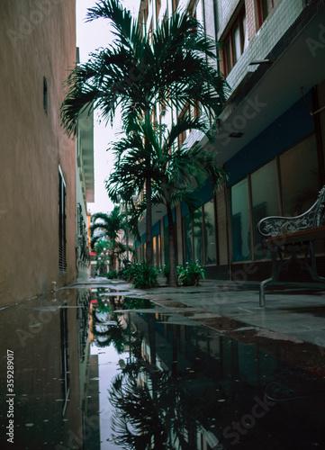 Fotografia, Obraz Callejon y dia lluvioso