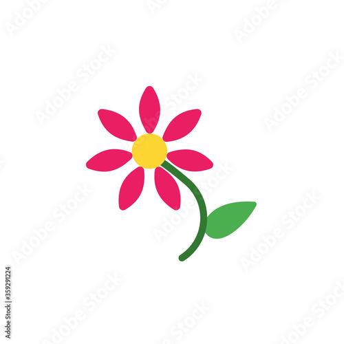 Photo Asteraceae flower icon