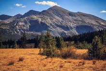Mount Dana, Yosemite National Park, California