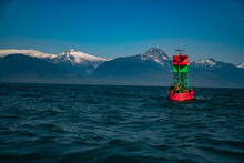 Seals On Buoy With Mountain Ra...