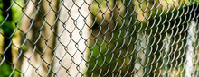 Fence Netting Chain-link In Fo...