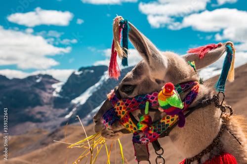 Photo Montaña de colores en cusco