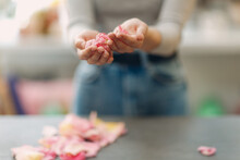 Woman Hands And Pink Flowers A...