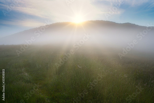 Obraz Morgentlicher Frühnebel im Thüringer Wald nahe Schmalkalden - fototapety do salonu