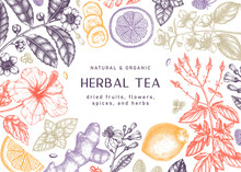 Hand Sketched Herbal Tea Ingre...