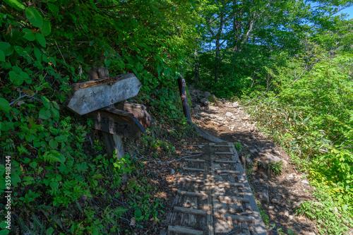 Fotografie, Obraz 田尻尾根コースの分岐点の道標