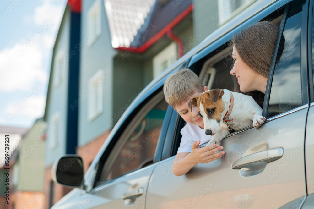 Fototapeta Beautiful caucasian woman travels with a child and a dog. Mom and son leaned out of the car window in an embrace with a puppy of Jack Russell Terrier. Happy family go on a car trip.